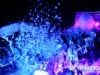 didziausias-putu-sou-obuoliu-sala_foam-party
